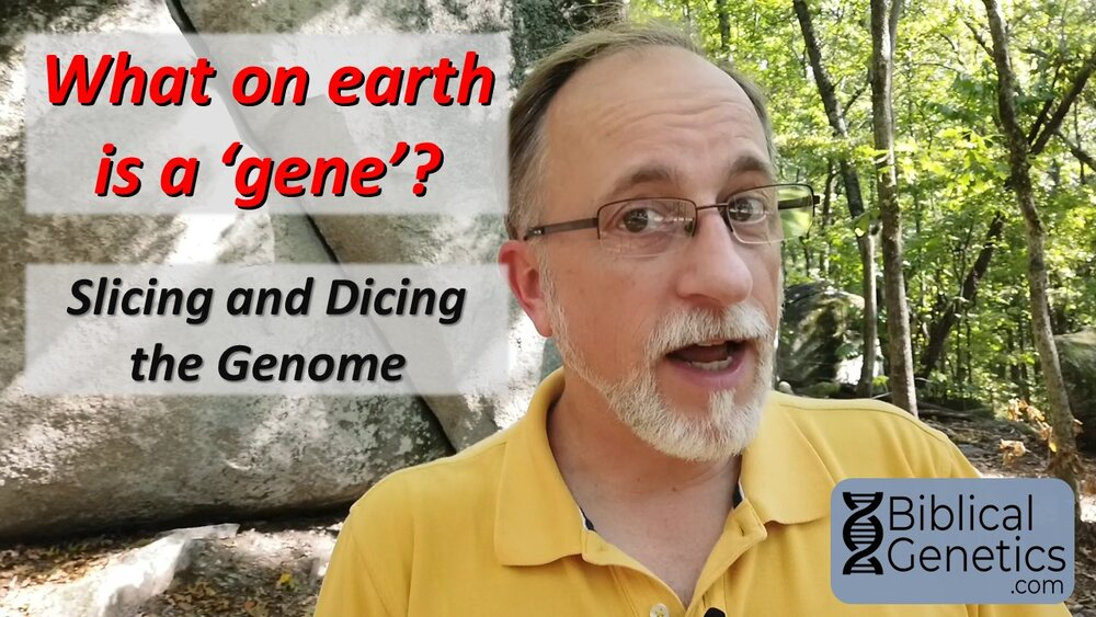 What on earth is a 'gene'? Slicing and dicing the genome.