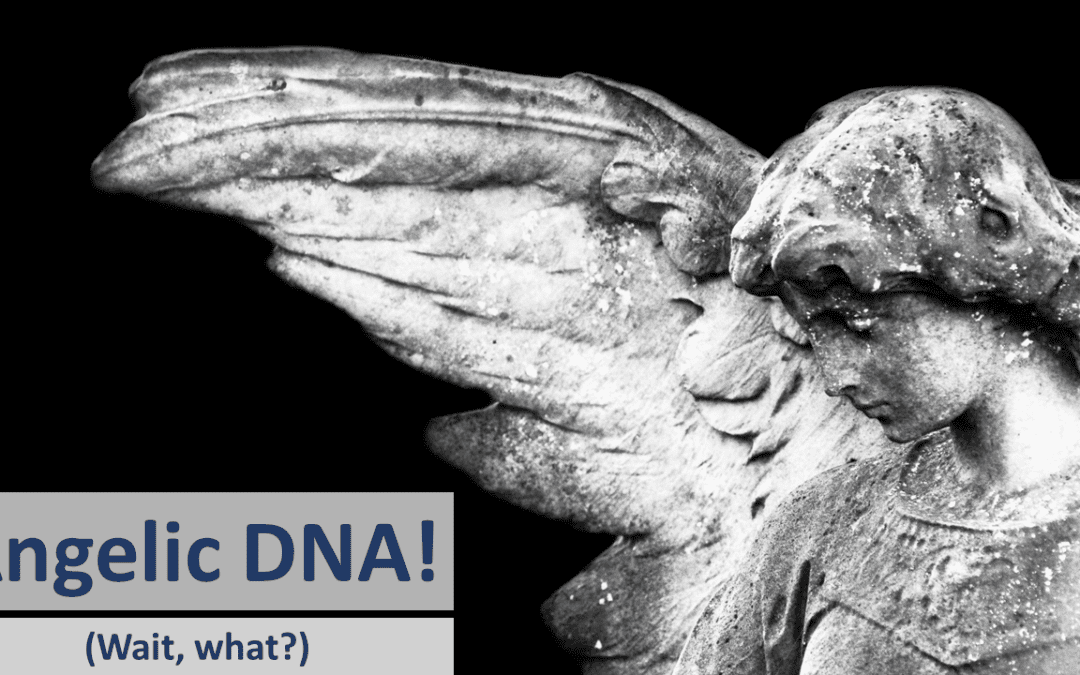 Angelic DNA! Wait, what?