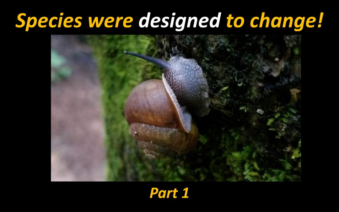 God Deliberately Engineered Life to Change, but How Much Change is Allowed?